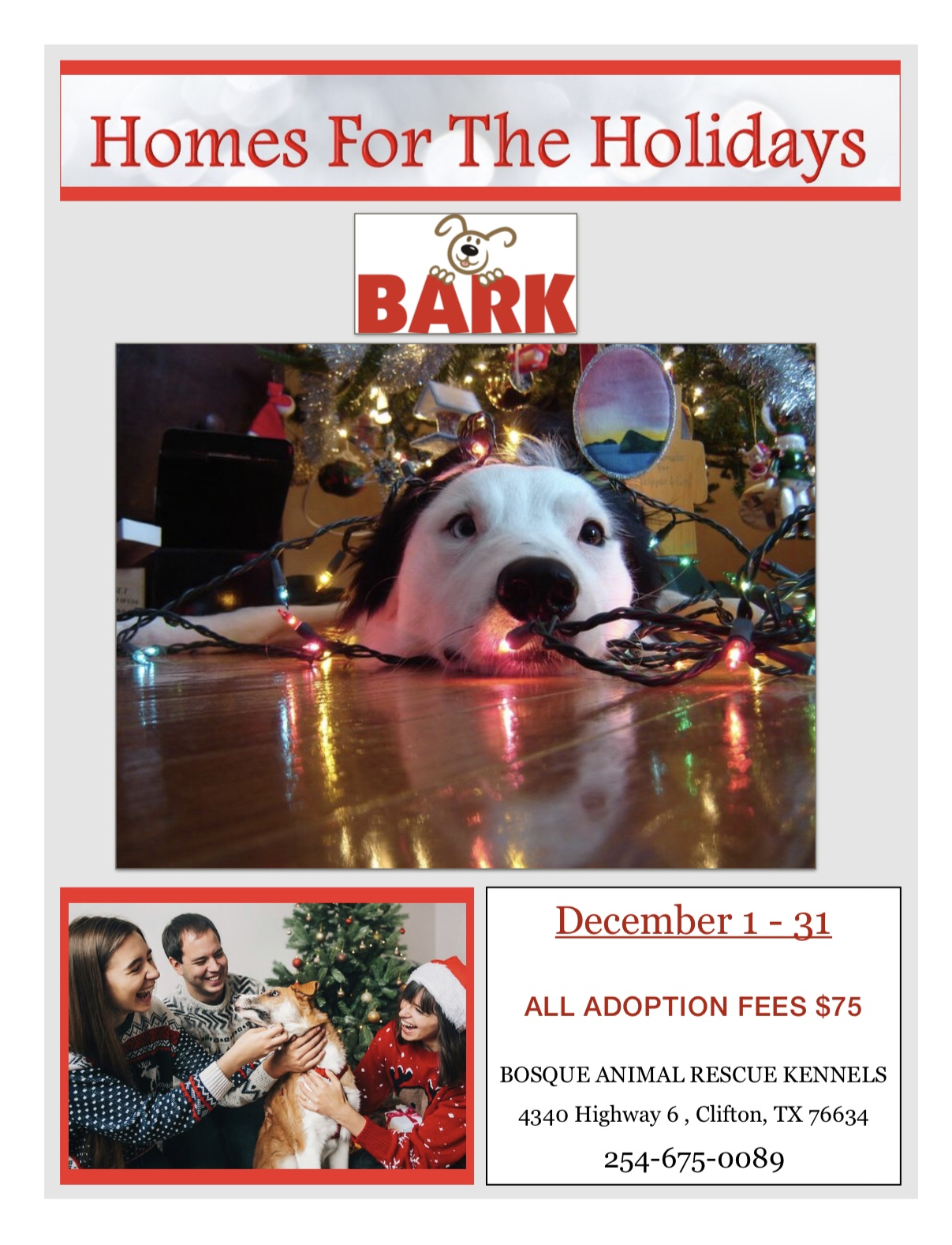 2018 BARK Home for the Holidays